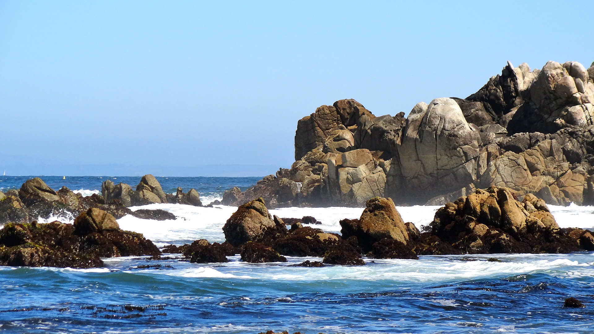 Pacific Grove hope